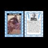0011_2019_OM_Flyer-Trading-Card_1200x